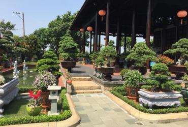 Tưới tự động cho vườn cây cảnh