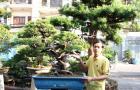 Duyên tùng Đài Loan 79