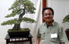 Vườn Bonsai của Mr David Nguy