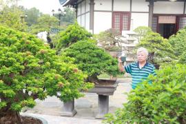 Nhiều tác phẩm Bonsai độc, lạ tại vườn DONA
